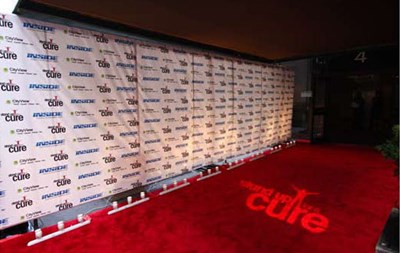 SUFAC-Dave Mattews step _ Repeat _ Carpet